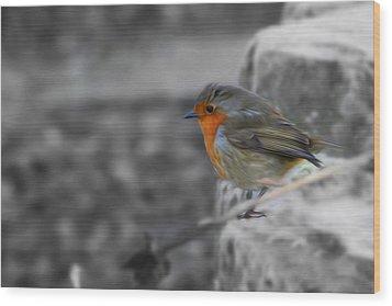 Wee Robin Wood Print
