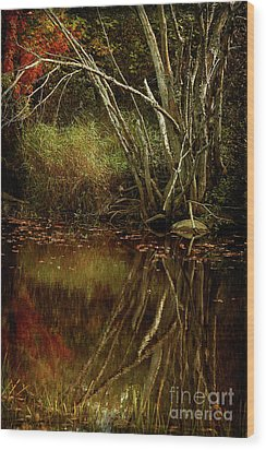 Weeping Branch Wood Print