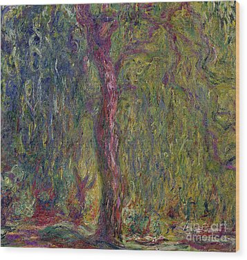 Weeping Willow Wood Print by Claude Monet