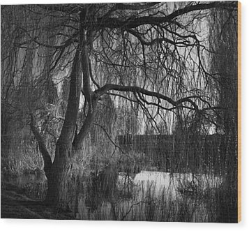Weeping Willow Tree Wood Print by Ian Barber