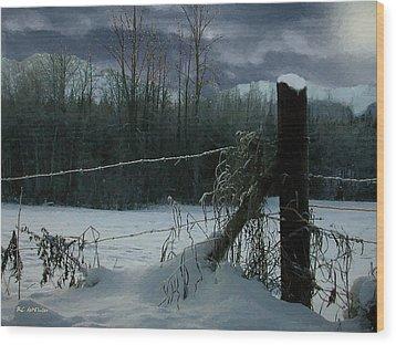 Weeping Winter Moon Wood Print by RC deWinter