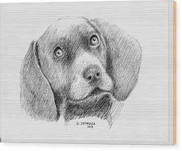 Weimaraner Puppy Wood Print