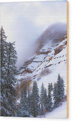 Welcome December Wood Print