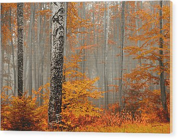Welcome To Orange Forest Wood Print by Evgeni Dinev