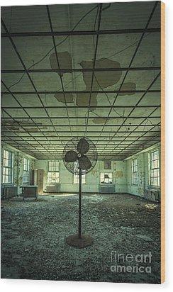 Welcome To The Asylum Wood Print by Evelina Kremsdorf