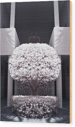 Welcome Tree Infrared Wood Print by Adam Romanowicz