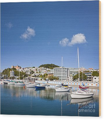 Wellington Oriental Bay Marina New Zealand Wood Print