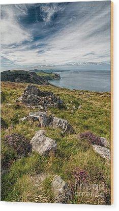 Welsh Peninsula Wood Print by Adrian Evans