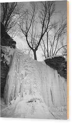 Wood Print featuring the photograph Wequiock Walls Of Ice by Mark David Zahn