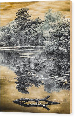 Wood Print featuring the photograph West Brook Pond by Steve Zimic