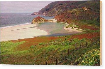 West Coast Fields Wood Print by Sharon Costa