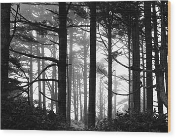 West Coast Trees Wood Print