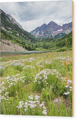 West Elk Wildflowers Wood Print