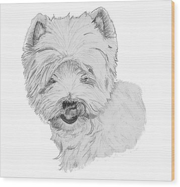 West Highland Terrier Drawing Wood Print by Catherine Roberts