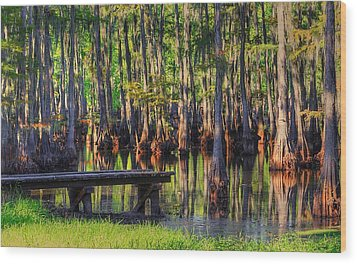 West Monroe Swamp Dock Wood Print