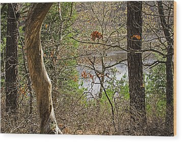 West Pond In The Woods Wood Print by Frank Winters