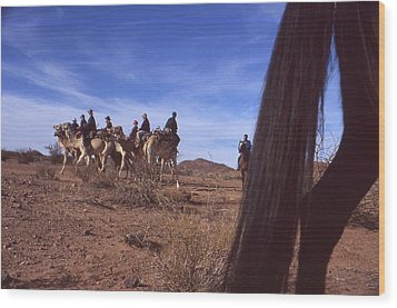 Western Cape Desert South Africa 1996 Wood Print by Rolf Ashby