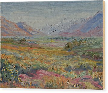 Western Cape Mountains Wood Print