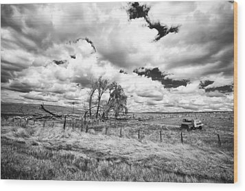 Wood Print featuring the photograph Western Kansas by Jay Stockhaus