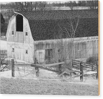Western New York Farm 1 In Black And White Wood Print by Tracy Winter