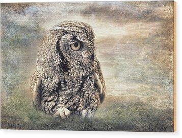 Western Screech Owl Wood Print