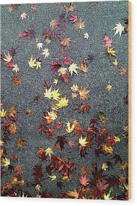 Wet Autumn Wood Print