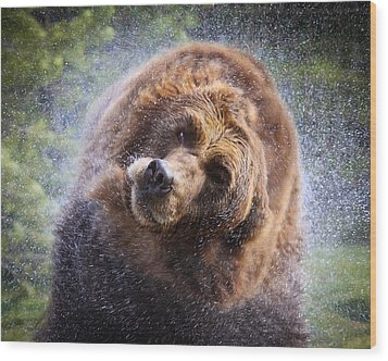 Wood Print featuring the photograph Wet Griz by Steve McKinzie