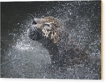 Wood Print featuring the pyrography Wet Jaguar  by Shoal Hollingsworth