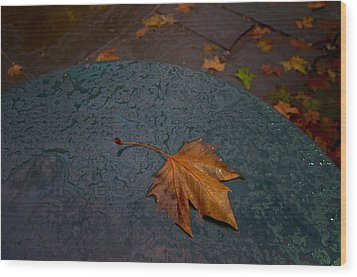 Wet Leaf Wood Print by Mike Horvath