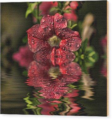 Wet Petunia Wood Print