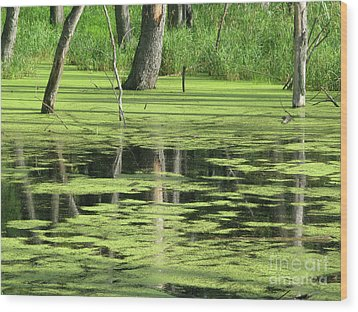 Wood Print featuring the photograph Wetland Reflection by Ann Horn