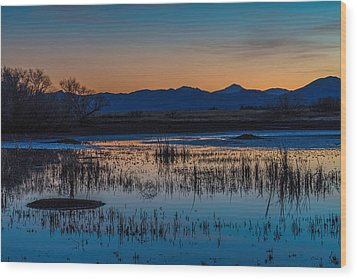 Wood Print featuring the photograph Wetland Twilight by Beverly Parks