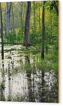 Wetlands Wood Print by Frozen in Time Fine Art Photography