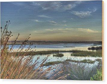 Wetlands Sunset Wood Print by Richard Stephen