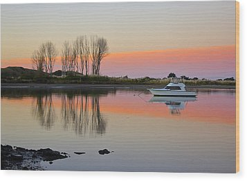 Whakatane At Sunset Wood Print by Venetia Featherstone-Witty