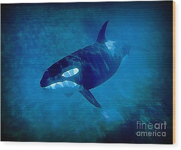 Whale Wood Print by John Malone