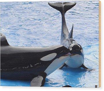 Whale Kiss Wood Print