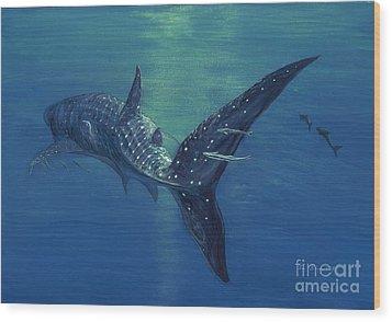 Whale Shark Wood Print
