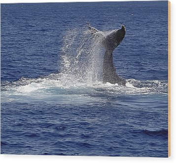 Wood Print featuring the photograph Whale Tale Splash by Penny Lisowski