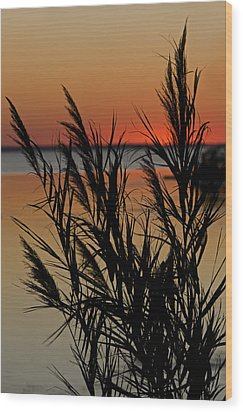 Wood Print featuring the photograph Whalehead Sunset Obx II by Greg Reed