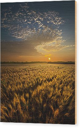 What Dreams May Come Wood Print by Phil Koch