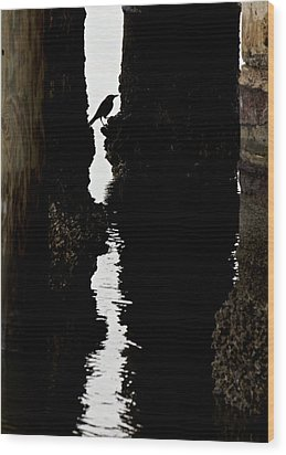 What Lies Beneath Wood Print by Penny Meyers