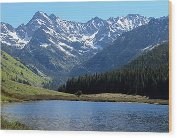 Beautiful Colorado Wood Print by Fiona Kennard