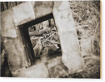 Wood Print featuring the photograph What Remains by Amber Kresge
