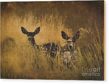 What'cha Lookin' At Wood Print by Karen Slagle