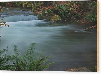 Wood Print featuring the photograph Whatcom Falls Park by Jacqui Boonstra