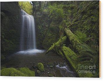 Whatcom Falls Serenity Wood Print