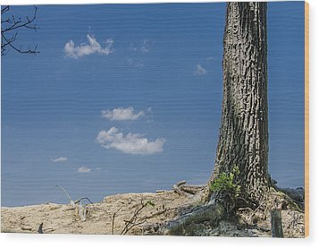 Wood Print featuring the photograph Whats Lies Beyond by Bradley Clay