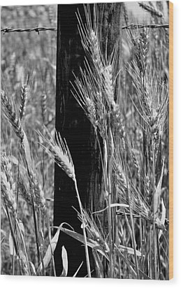 Wood Print featuring the photograph Wheat And Fence Post by Ellen Tully