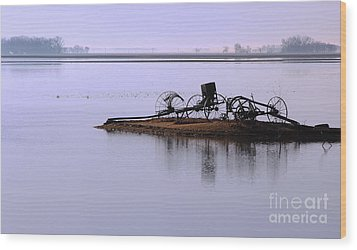 Wood Print featuring the photograph Wheat Field Under Water by Steve Augustin